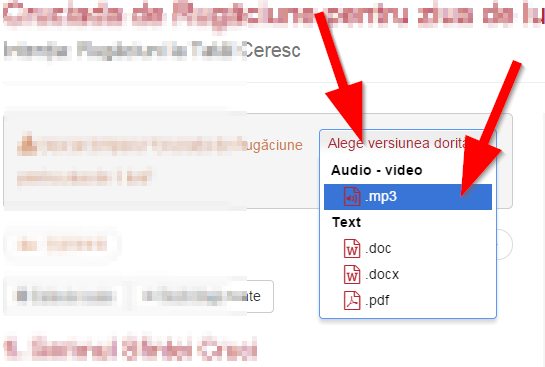 /workspace/uploads/images/how_to_descarcare_cruciada_audio.png